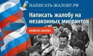Как и куда подать жалобу на нелегальных мигрантов в России в 2020 году