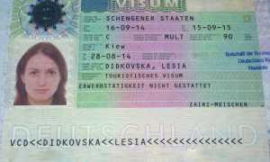 Как заполняется анкета на визу в Германию в 2020 году. Образец заполнения