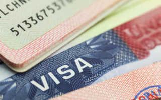 Как читать американскую визу: что означает каждый пункт в 2020 году. Подробная расшифровка