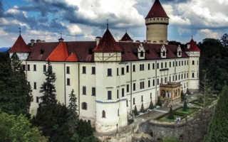 Оформление бизнес визы в Чехию в 2020 году: особенности и необходимые документы