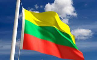 Документы для визы в Литву: сколько стоит литовская виза для россиян?