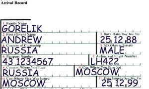 Миграционная карта США в 2020 году: где получить бланк. Образец заполнения