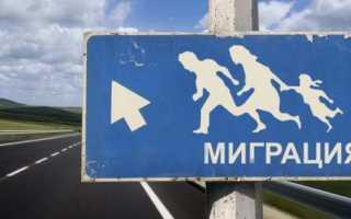 Международная трудовая миграция