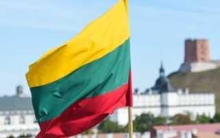 Как заполнить анкету на визу в Литву в 2020 году. Основные ошибки