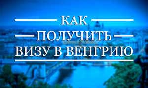 Виза в Венгрию для россиян в 2020 году: оформление, проверка статуса, национальная стоимось, список необходимых документов для получения