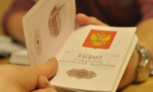 Проверка готовности гражданства РФ онлайн по фамилии в 2020 году