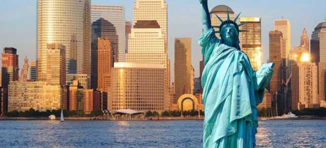 Востребованные профессии в США: как уехать в Америку работать в 2020 году
