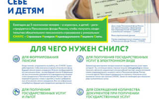 Как узнать СНИЛС онлайн по паспорту?