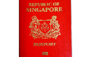 Иммиграция в Сингапур из России в 2020 году: как оформить ВНЖ