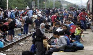 Справка переселенца: правовой статус вынужденных переселенцев